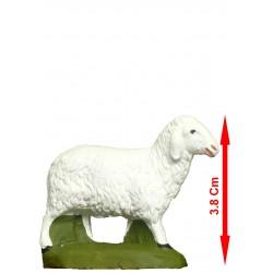 Mouton bellant