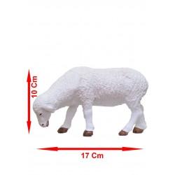 Mouton Broutant N°4 (série...